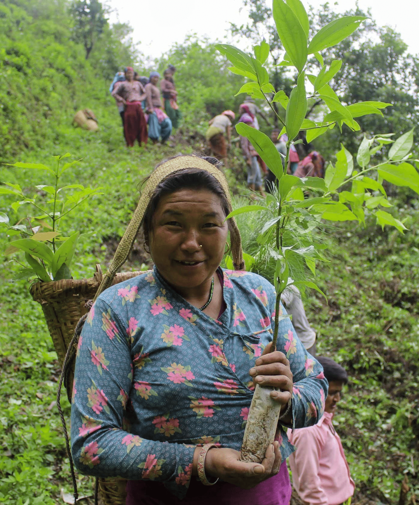 Eden Reforestation Project - lady planting trees